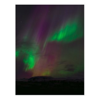 Aurora Borealis Northern Lights Trees Nature Lands Postcard