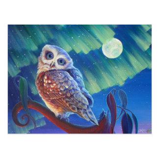 Aurora Owl Post Cards