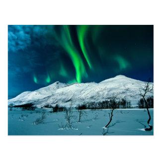 Aurora Postcard
