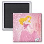 Aurora Princess Refrigerator Magnets