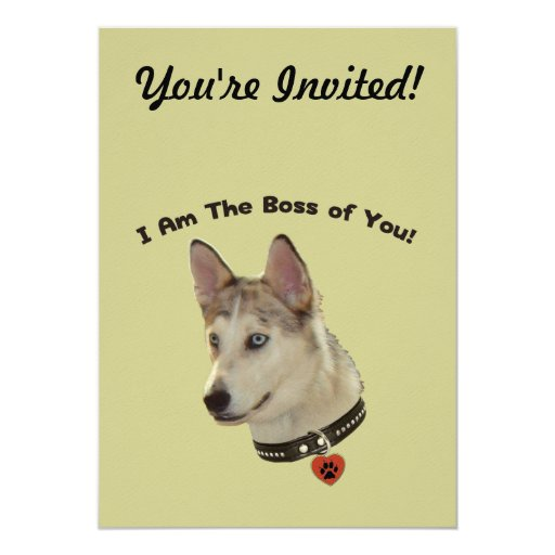 "Ausky Dog Boss of You 5"" X 7"" Invitation Card"