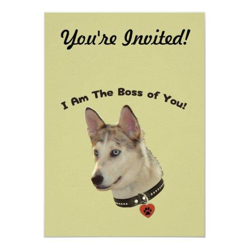 Ausky Dog Boss of You Custom Invitations