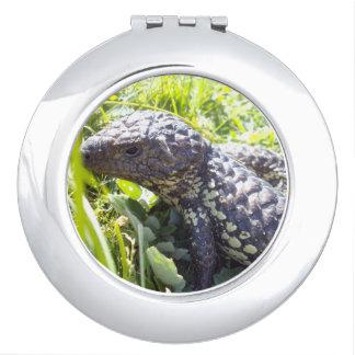 Aussie_Blue_Tongue_Lizard_Compact-Mirror Mirror For Makeup