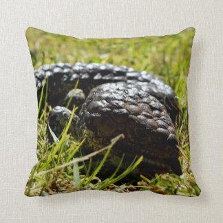 Aussie_Blue_Tongue_Lizard,_Lounge_Cushion. Cushion