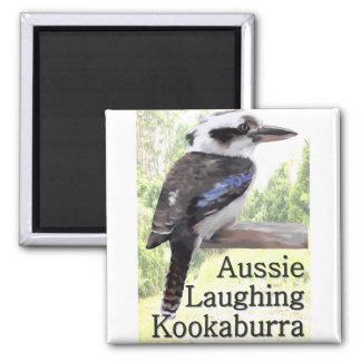 Aussie Laughing Kookaburra Square Magnet