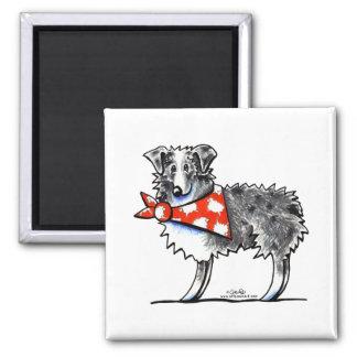 AUSSIE-M Australian Shepherd Square Magnet