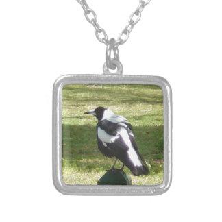 Aussie Magpie Custom Necklace