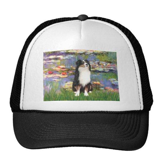Aussie Shep 2 - Garden Cap