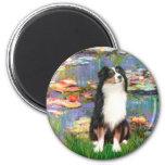 Aussie Shep 2 - Garden Fridge Magnet