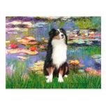 Aussie Shep 2 - Garden Postcards