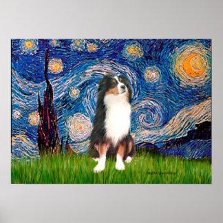 Aussie Shep (Tri2) - Starry Night Poster