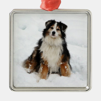 Aussie Shepherd Dog in Snow Ornament
