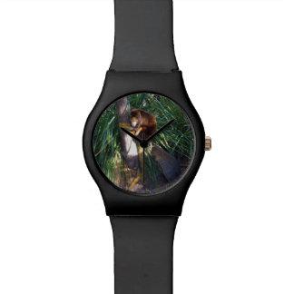 Aussie Tree Kangaroo, Ladies Black Watch