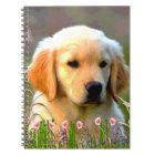 Austin Golden Labrador Puppy Notebook