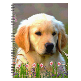 Austin Golden Labrador Puppy Notebooks