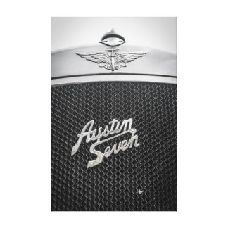 Austin Seven Fly Catcher Canvas Print