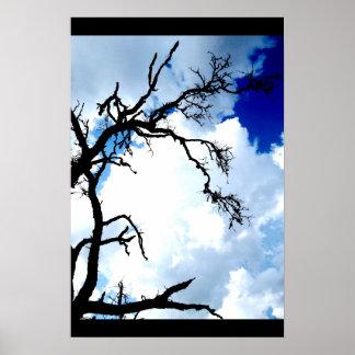"""""""Austin Sky Tree"""" JTG Art Poster"""
