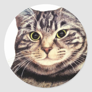 Austin The Bengal Cat Classic Round Sticker