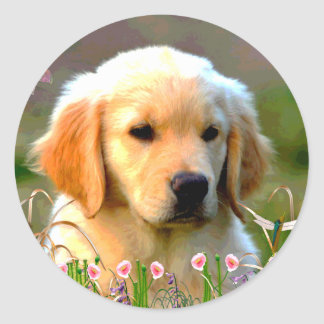Austin The Golden Labrador Classic Round Sticker