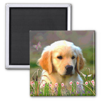 Austin The Golden Labrador Square Magnet