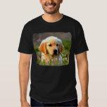 Austin The Golden Labrador T Shirt