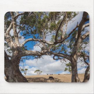 Australia, Fleurieu Peninsula, Normanville Mouse Mat