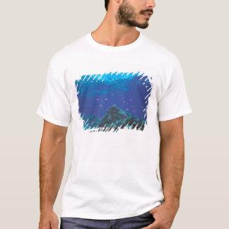 Australia, Great Barrier Reef. Swarming Purple T-Shirt
