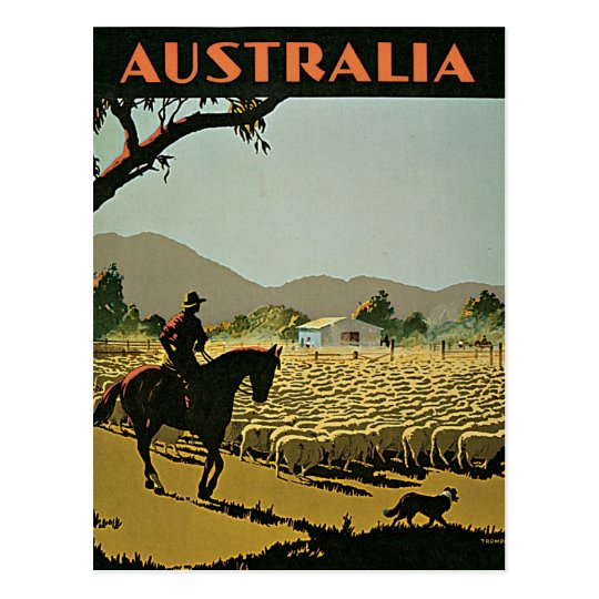 Australia In The Sun Vintage Travel Postcard