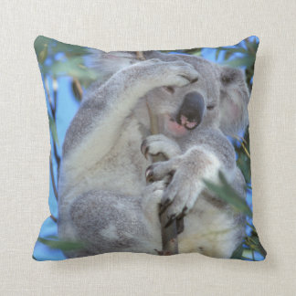Australia, Koala Phasclarctos Cinereus) Cushion