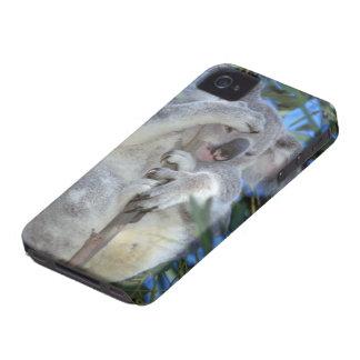 Australia, Koala Phasclarctos Cinereus) iPhone 4 Cover