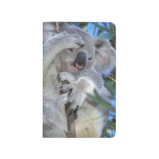 Australia, Koala Phasclarctos Cinereus) Journal