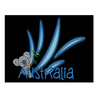 Australia Koala Postcard