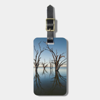 Australia, Murray River Valley, Barmera, Lake Luggage Tag