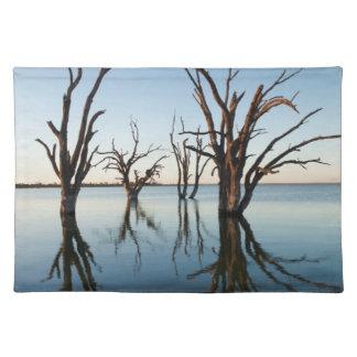 Australia, Murray River Valley, Barmera, Lake Placemat