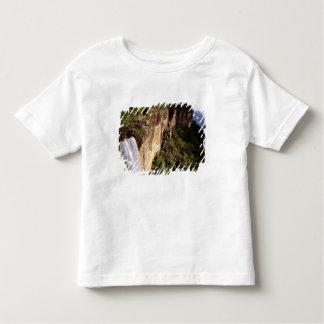 Australia, New South Wales, Fitzroy Falls. T Shirts