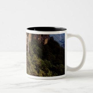 Australia, New South Wales, Fitzroy Falls. Two-Tone Coffee Mug