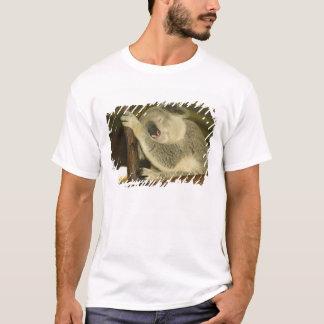 Australia, Queensland, Brisbane. Fig Tree T-Shirt