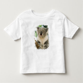 Australia, Queensland, Brisbane, Fig Tree Toddler T-Shirt