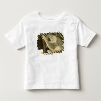 Australia, Queensland, Brisbane. Fig Tree Toddler T-Shirt