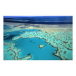 Australia - Queensland - Great Barrier Reef. 2 Art Photo