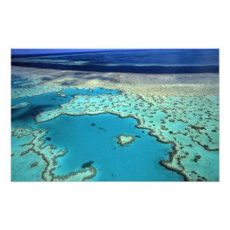 Australia - Queensland - Great Barrier Reef. 2 Art Photo