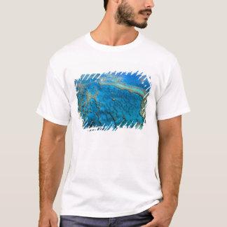 Australia - Queensland - Great Barrier Reef. 2 T-Shirt
