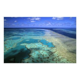 Australia - Queensland - Great Barrier Reef. 3 Art Photo