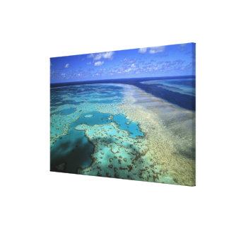 Australia - Queensland - Great Barrier Reef. 3 Canvas Print
