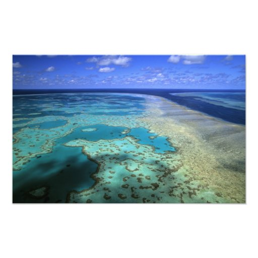 Australia - Queensland - Great Barrier Reef. 3 Photo Print
