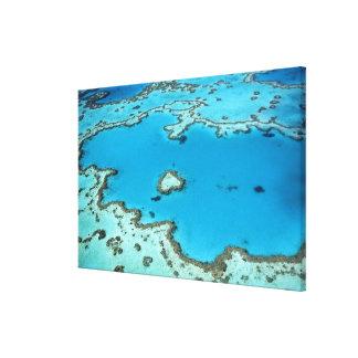 Australia - Queensland - Great Barrier Reef. 4 Canvas Print
