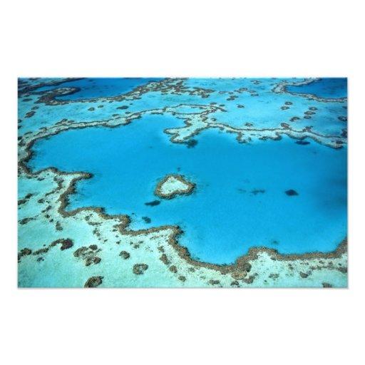Australia - Queensland - Great Barrier Reef. 4 Photographic Print