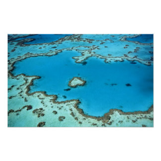 Australia - Queensland - Great Barrier Reef. 4 Poster