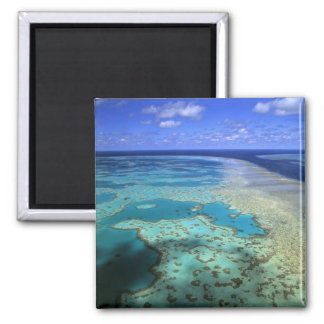 Australia - Queensland - Great Barrier Reef. 4 Square Magnet
