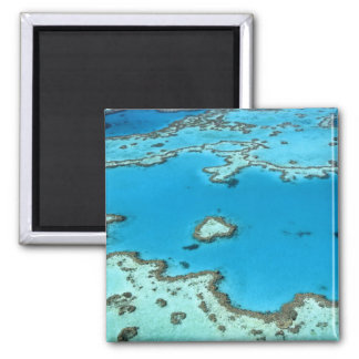 Australia - Queensland - Great Barrier Reef. 5 Square Magnet